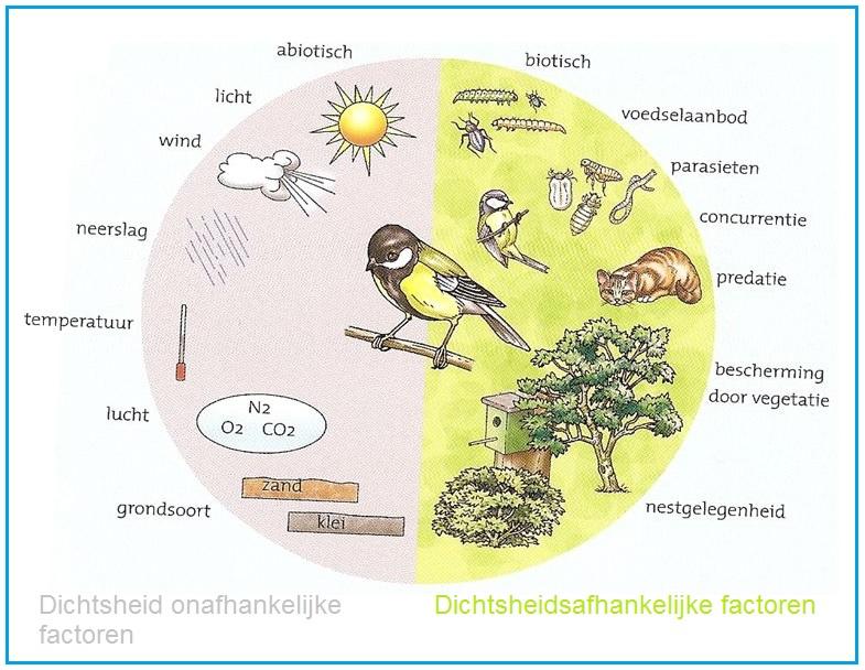 Abiotische factoren - Hoe het ontwerpen van een levende ...